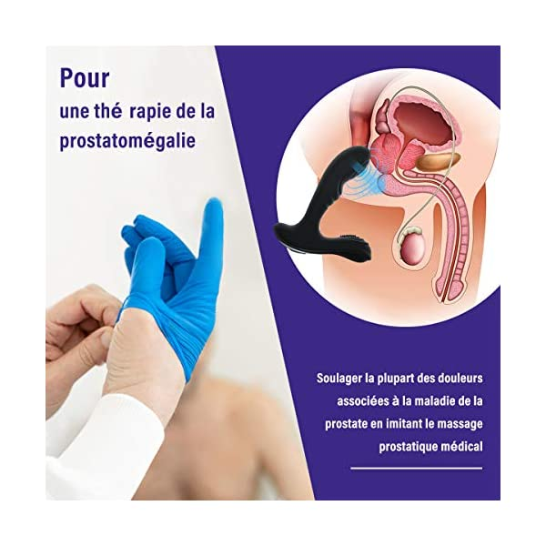 Masseur Prostate Vibrant, Vibromasseur Anale avec 12 Modes de Mouvements et Trois Moteurs de Vibration, PALOQUETH Sex…