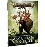 Battletome Maggotkin of Nurgle Age of Sigmar Hardback