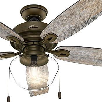 Hunter Fan 52 Inch Outdoor Ceiling Fan Includes Led Globe