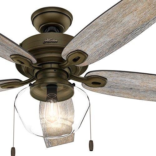 Hunter Fan 52 inch Outdoor Ceiling Fan includes LED Globe Light Kit with Clear Glass (Certified ()