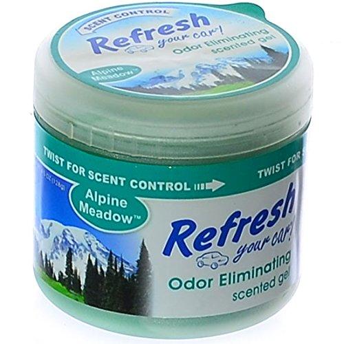 Refresh Your Car 4.5 oz Scented Gel -Alpine Meadow ()