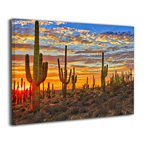 (Pullan Eudora National Park Arizona Sonoran Desert Cactus Wall Art Painting Pictures Print On Canvas The Picture for Home Modern Decoration Wood Frame Gallery Stretched 16