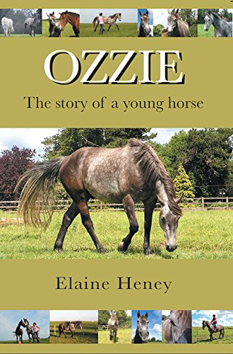Ozzie: The Story of a Young Horse