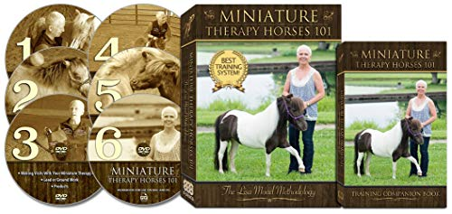 Miniature Therapy Horses 101