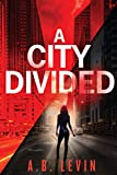 A City Divided (A Naomi Archer and Detective McCauley Series)