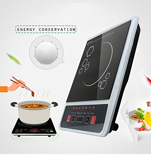Zinnor Digital Electric Induction Cooktop Countertop Burner Cooker 2000W 110V Portable Sensor Touch Automatic Function 5 Power Level