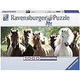 1000 pièces de puzzle chevaux sauvages