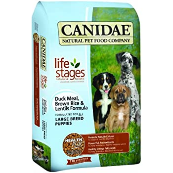 Amazon Com Canidae All Life Stages Large Breed Puppy Food