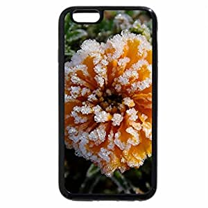 iPhone 6S / iPhone 6 Case (Black) BEAUTIFUL & EDIBLE