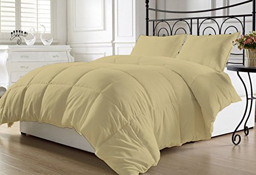 Luxurious and Hypoallergenic 800 Thread Count 1 Piece Down Alternative Comforter 200 GSM Microfiber Fill Light Weight 100% Egyptian Cotton Solid By Kotton Culture (Queen / Full, Taupe )