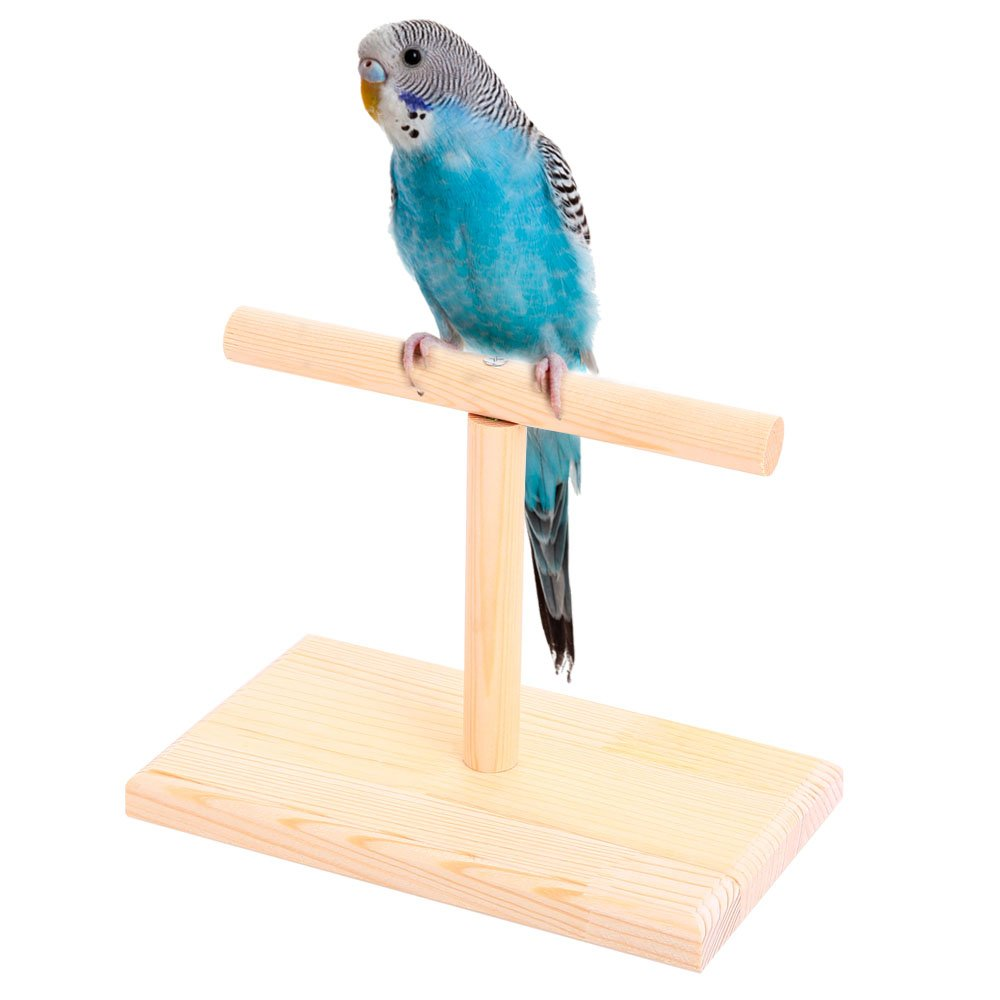 QBLEEV Portable Parrot Training Perches Bird Play Stand Birdcage Play Gym, Cockatiel Playground Window T Perch Fits for Concures Parakeets 7.8'' L4.7 W5.3 H