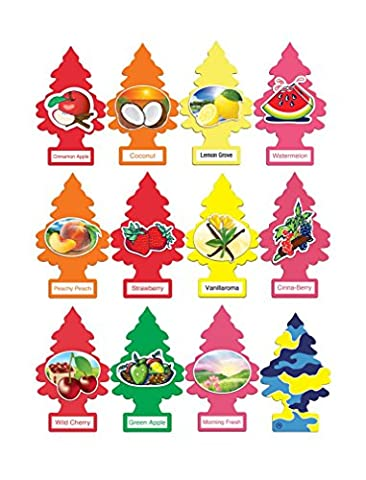Little Trees Home and Car Air Freshener 12 Pack Most Popular Fruit Scents - Little Trees Car