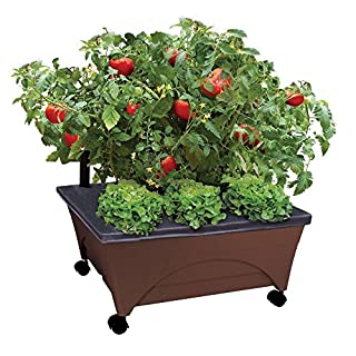 Emsco Group City Picker Raised Bed Grow Box – Self Watering and Improved Aeration – Mobile Unit with Casters - Brown