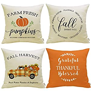 Best Epic Trends 51sB8fPnv0L._SS300_ Meekio Fall Decorations for Home Set of 4 Fall Pillow Covers 18 x 18 Buffalo Check Truck Quote Cushion Covers for Fall…
