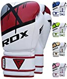 Rdx Boxing Gloves 16ozs Review and Comparison