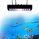 BEAMNOVA Dimmable 180W LED Aquarium Light Lighting Full Spectrum For Fish Freshwater and Saltwater Coral Tank Blue and White LPS/SPS