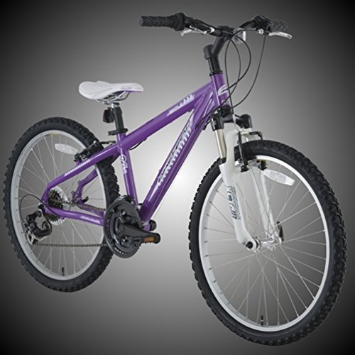 "BikeHard Battle Twenty-Four 24"" Purple"