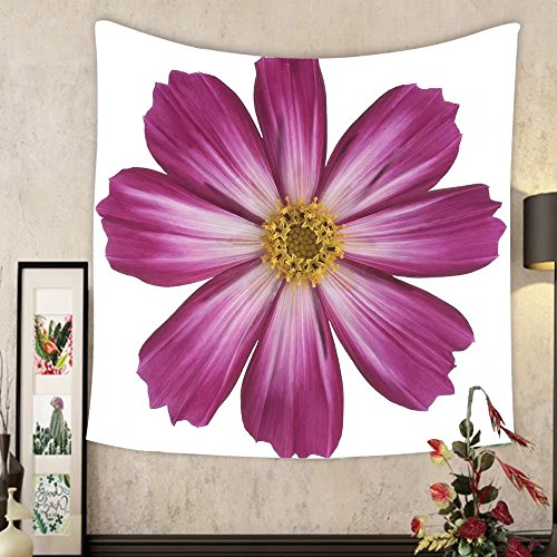Grace Little Custom tapestry studio shot of mauve colored cosmos isolated on white background large depth of field dof macro ()