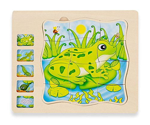 Wooden 5 Layers Frog Life Cycle Puzzle