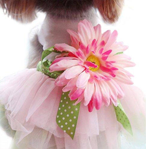 Wingeler Doggie Daisy Gauze Tutu Dress Skirt Pet Dog Cat Princess Clothes Bowk Not Dress A3-Pink-S (Cat Tutu)