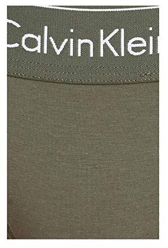 Calvin Klein Women's Regular Modern Cotton Thong Panty, Beetle, Large