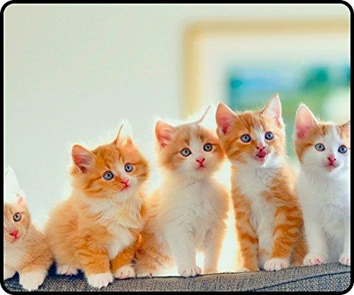 DKLZY Anti-Slip kittens sofa cats 300x250x4mm(11.80x9.84x0.16inch) Mouse Pad ($300 Sofa)