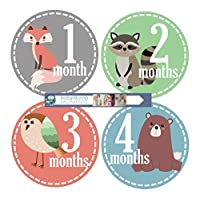Baby Monthly Milestone Stickers by BabyBumpMoments | Set of 12 Woodland Animal Baby Stickers for First Year | New Baby Gift