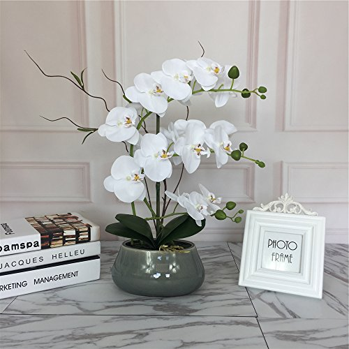 Large Lifelike Silk Orchid with Decorative Ceramic Vase,Vivid Artificial Flower Arrangement,Potted Orchid Plant,White