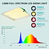 VIPARSPECTRA L 2000W LED Grow Light 4x4ft, with