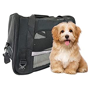 Premium Pet Travel Carrier, Airline Approved, Soft Sided with Fleece Bed Mats, Perfect for Small Dogs, Cats, Birds, Rabbits 37