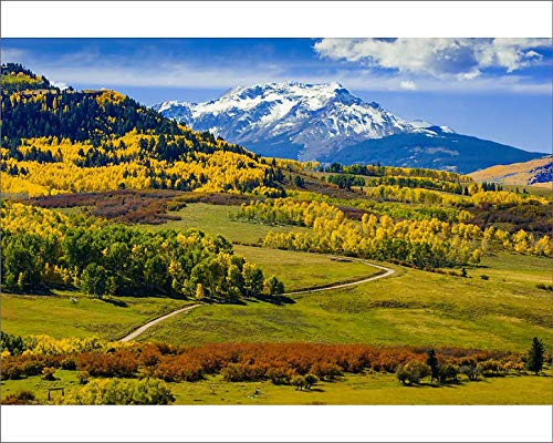- Media Storehouse 10x8 Print of Fall Colors, Vista, San Juan Range, Colorado, USA (18244921)