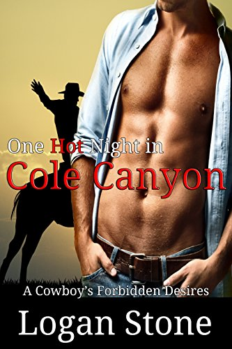 Stone Logan (One Hot Night in Cole Canyon: A Cowboy's Forbidden Desires)