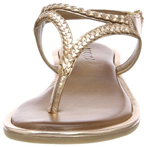 8368 Donna Gold Cinturino Rose Caviglia Rosa alla Inuovo 16782021 con Sandali qdHwUCU
