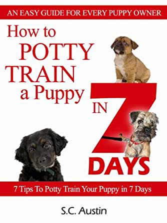 How To Housetrain Your Puppy So Much Petential