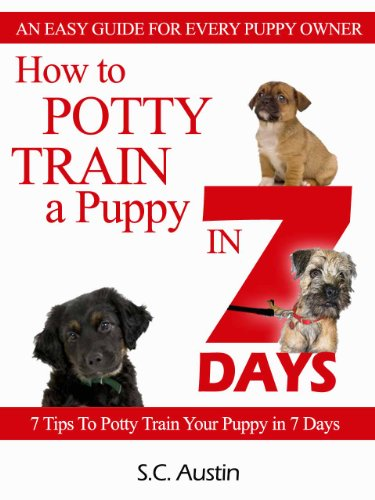 How To Potty Train A Puppy In 7 Days   7 Tips To Potty Train Your
