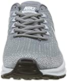 Nike Men's Running Shoes, Grey Gris Froid Gris Loup