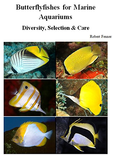 (Butterflyfishes for Marine Aquariums: Diversity, Selection & Care)