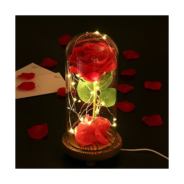 LEDMOMO-Red-Silk-Rose-and-Led-Light-with-Fallen-Petals-in-a-Glass-Dome-on-A-Wooden-Base-Artificial-Rose-Flowers-USB-Night-Light-Gift-for-Valentines-Day-Anniversary-Wedding-Birthday