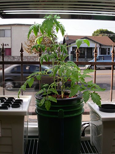 Buy hydroponic grow systems
