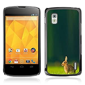 Graphic4You Cute Rabbit Bunny Animal Design Hard Case Cover for LG Nexus 4