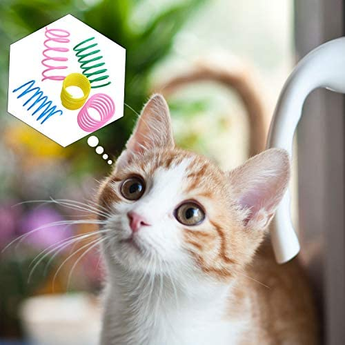 24 Pieces Colorful Spring Cat Toy Plastic Coil Spiral Springs Durable Interactive Toys for Cat Kitten Pets Novelty Gift
