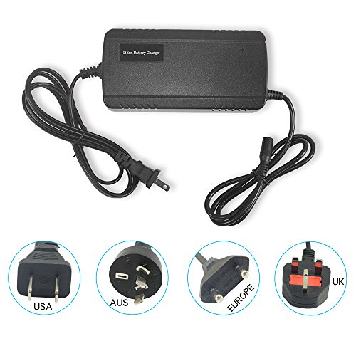 Junstar Lithium Li-ion Battery Charger Electric Bike Battery Charger Universal Charger for Electric Bicycle Ebike Charger with DC Plug(for 48 V (Lithium Electric Bike)