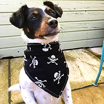 Dog Birthday Gift Dimples Dog Bandana The Perfect Dog Fashion Accessory Medium and Large Dogs Handmade in Ireland for Small Pirates Jolly Roger skulls and crossbones black Neckerchief 12