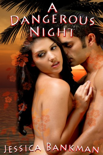 Women's Erotica: A Dangerous Night