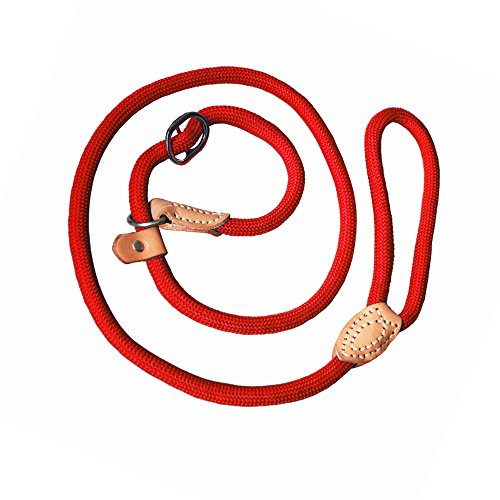 (Adjustable Nylon Dog Pet Rope Products Slip Training Leash Lead Collar, 4-Feet (red))