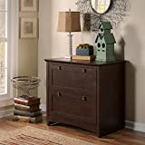 Bush Furniture Buena Vista 2 Drawer Lateral File Cabinet in Madison Cherry
