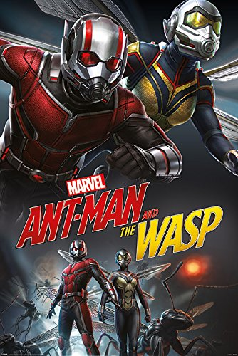 Amazon Com Ant Man And The Wasp Movie Poster Dynamic Duo Size