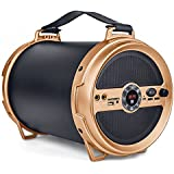 Iball Music Karaoke Barrel V 2.0 Bluetooth Portable Speaker with Wireless Mic , Remote Built In Fm Radio