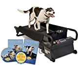 Medium DogTread Treadmill Premium K9 Fitness Kit