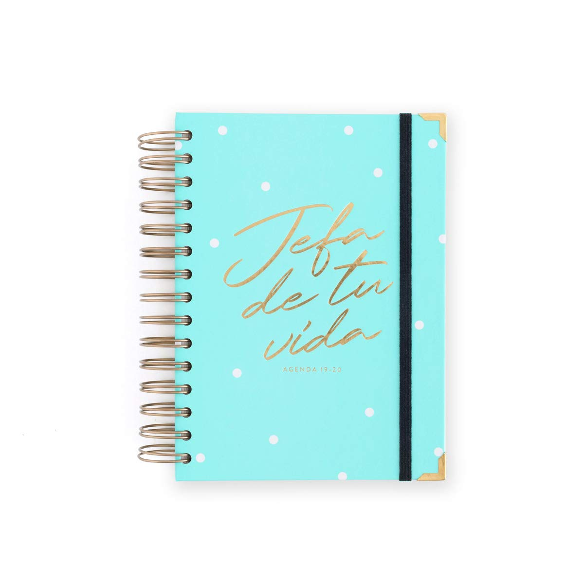 Amazon.com : 19-20 Daily Diary Head Mint. Medium : Office ...